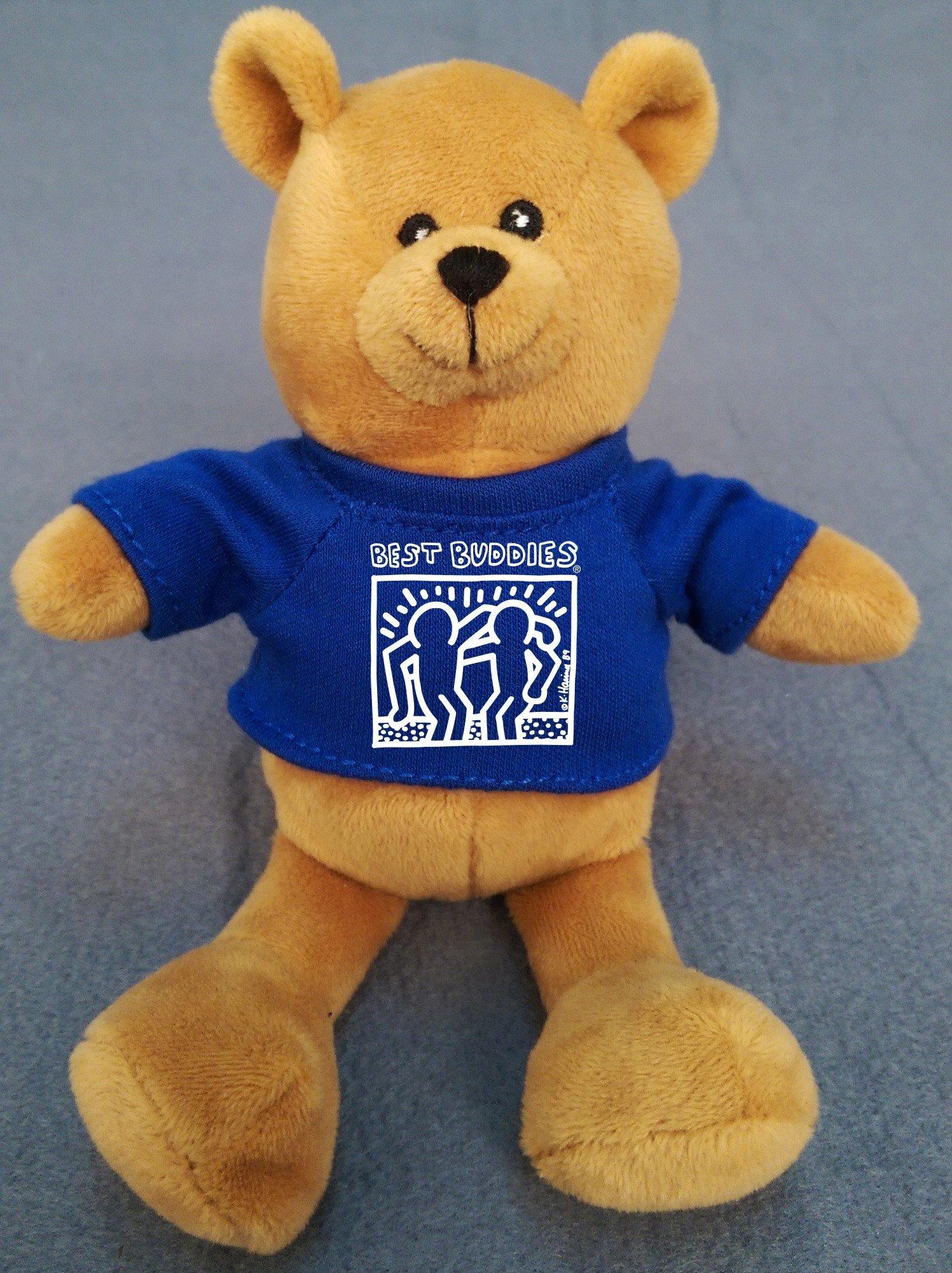 Teddy Bear wearing a White Haring blue shirt